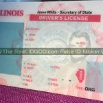 Illinois fake id template printed background made by IDGod