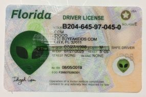 Florida fake id card made by IDGod