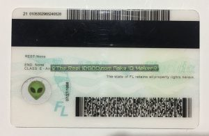 Florida scannable fake id card backside with magnetic stripe and barcodes made by IDGod.