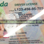 Florida fake id with OVI ghost image made by IDGod.