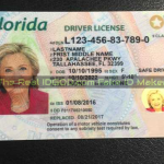 Florida fake id with gold ghost window made by IDGod.