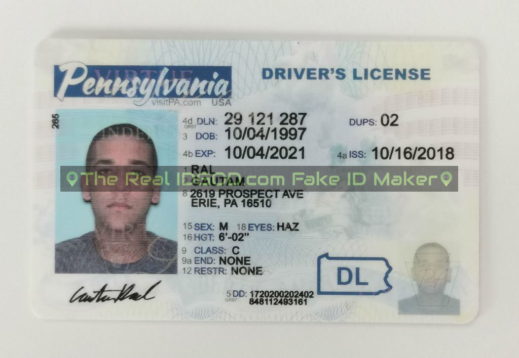 Pennsylvania fake id card made by IDGod