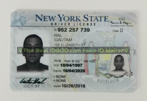 New York fake id card video snapshot made by IDGod.
