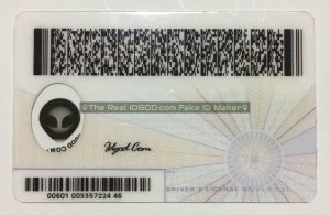 Virginia scannable fake id card backside with printing of encoded barcodes made by IDGod.